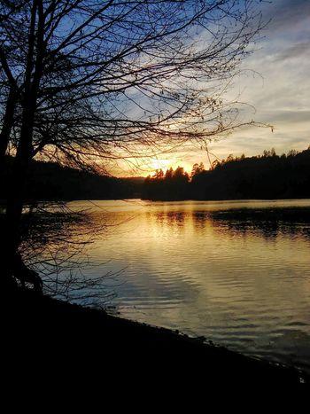 Lake Gregory, CA sunset Enjoying The Sun Nature Photography Naturelovers Nature Sunset