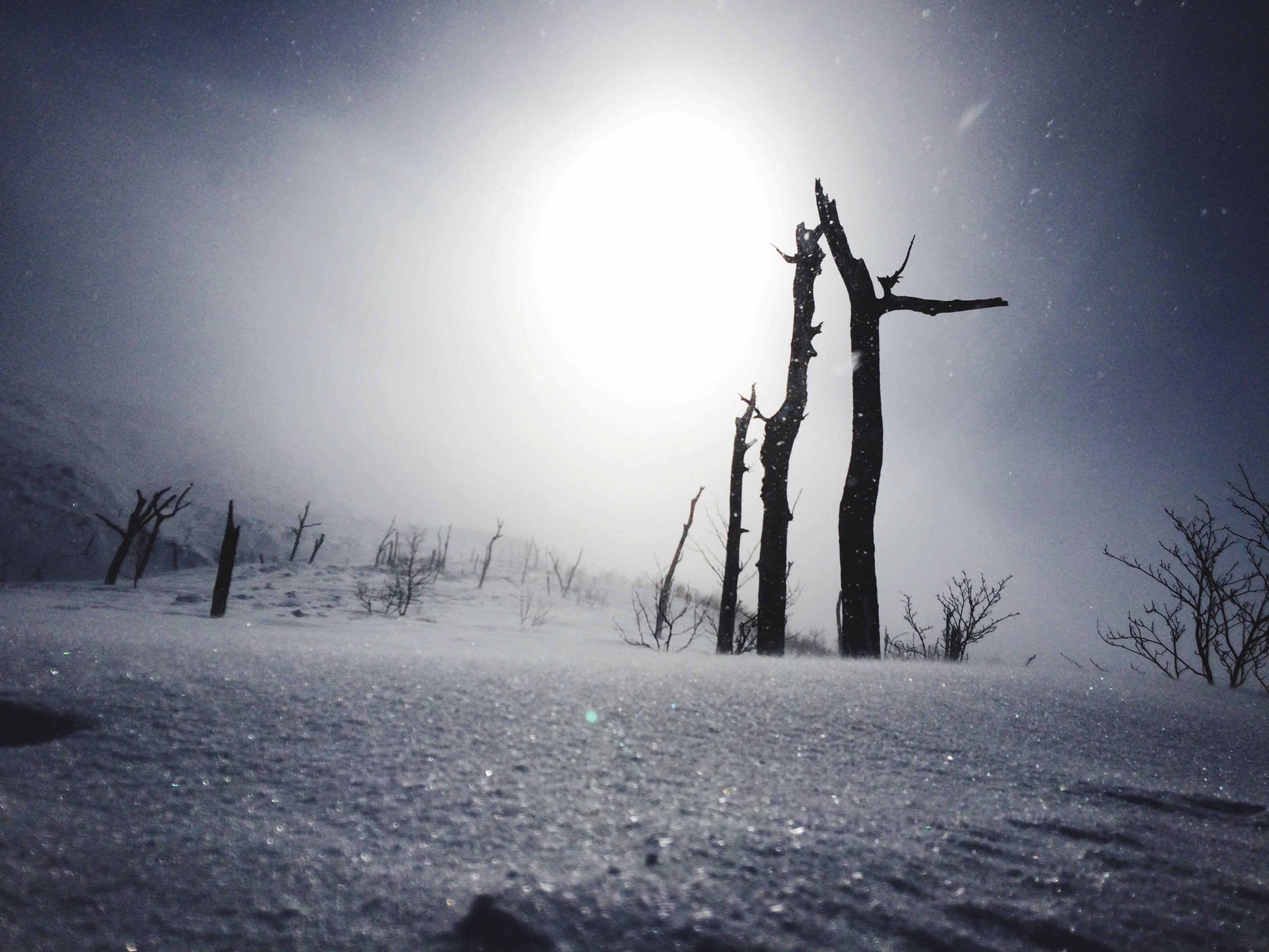 前十勝岳…修行でした…笑 Snowboard Snow Mountain Backcountry Nature