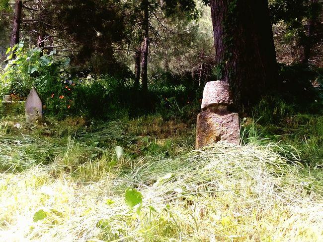 Adiga Adigha Circassia Cerkes Tombstone Graveyard