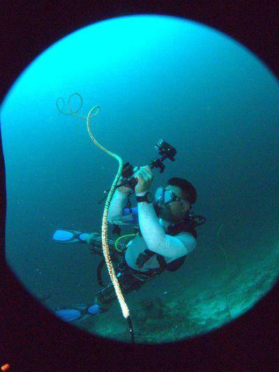 Enjoying Life Sea Taking Photos Hanging Out