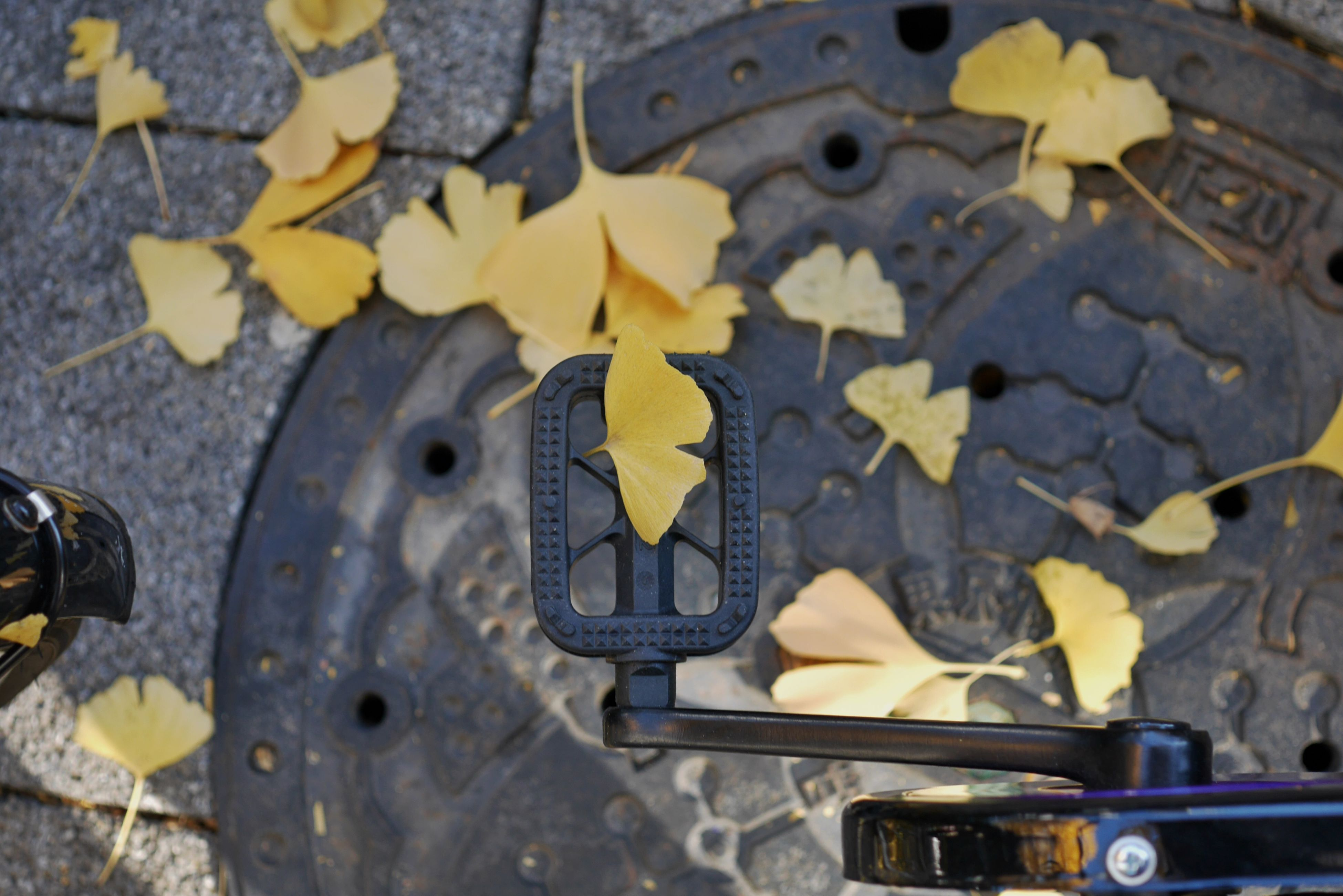 high angle view, yellow, close-up, still life, metal, day, no people, outdoors, shoe, messy, autumn, transportation, large group of objects, street, abandoned, leaf, wood - material, abundance, variation, directly above