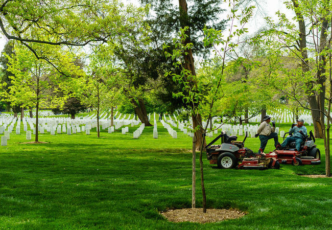 Arlington National Cemetery Day Field Grass Grassy Graveyard Graveyard Beauty Green Color Growth Lawn Lawnmower Military Mode Of Transport Mower Nature Paris Park Park - Man Made Space Soldiers Spring Tree Tree Trunk Up Close Street Photography Washington, D. C. Worker