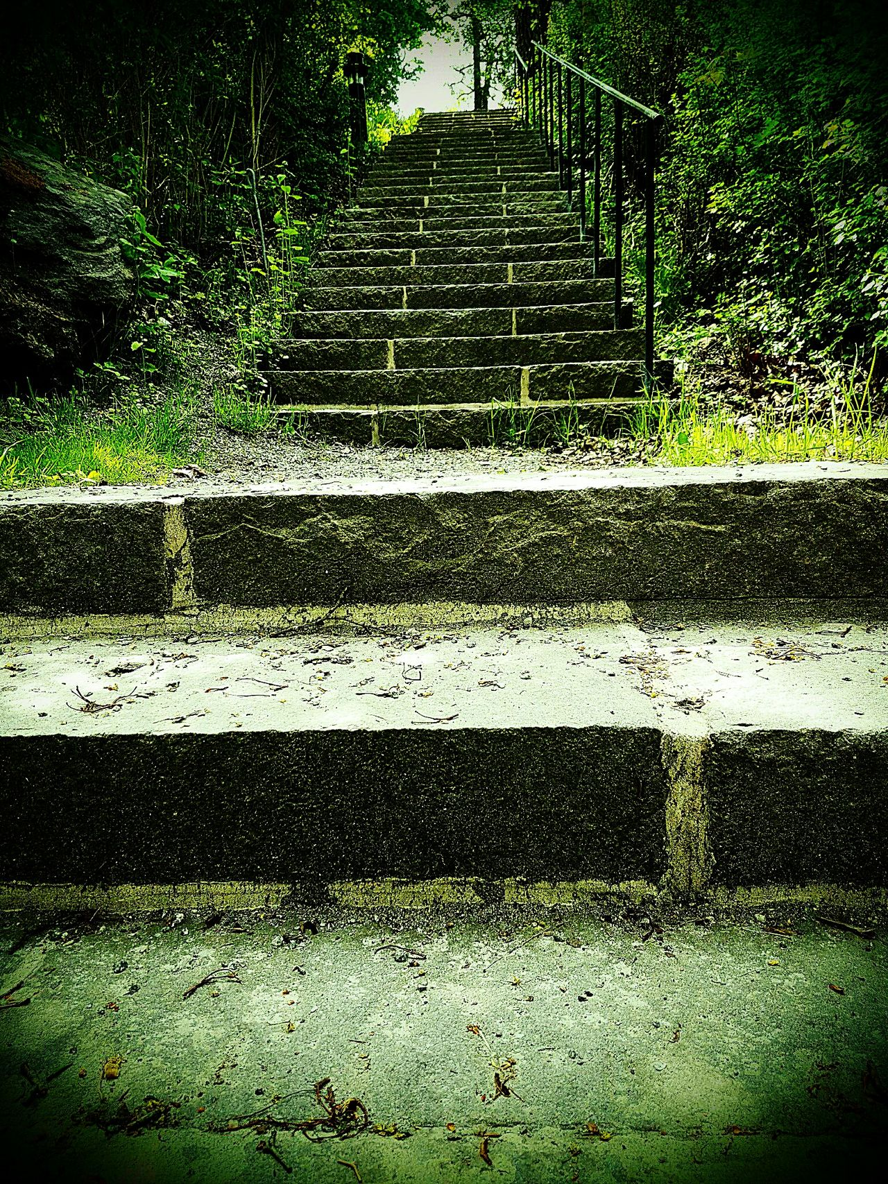 EyeEm Stairways Eyeem Stairs Collection EyeEm Gallery EyeEm Stairs Stairs_collection Stairway To Heaven Green Green Green!  Stone Stairs Stone Steps Stairs To Heaven Best Shots EyeEm Popular Photo Best Shots EyeEm Best Shots Eye4photography  Check This Out Best Shot Popular Popular Photos EyeEm Best Edits Eyeemphotography