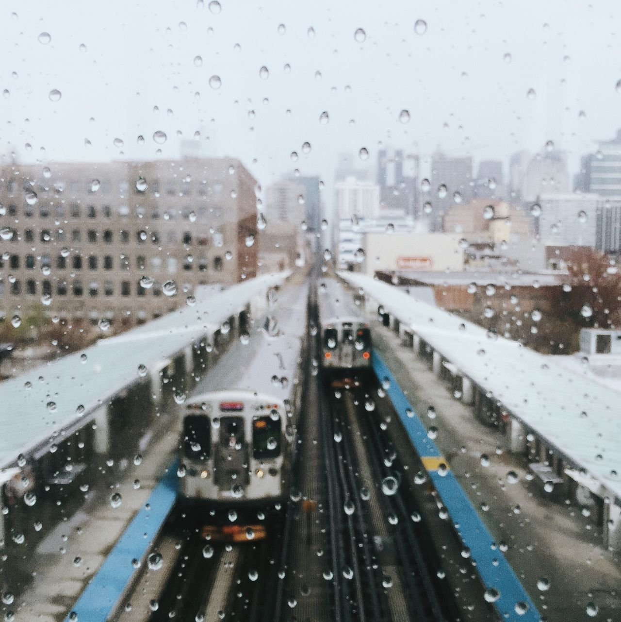 Beautiful stock photos of rain, Chicago, Day, Droplet, High Angle View