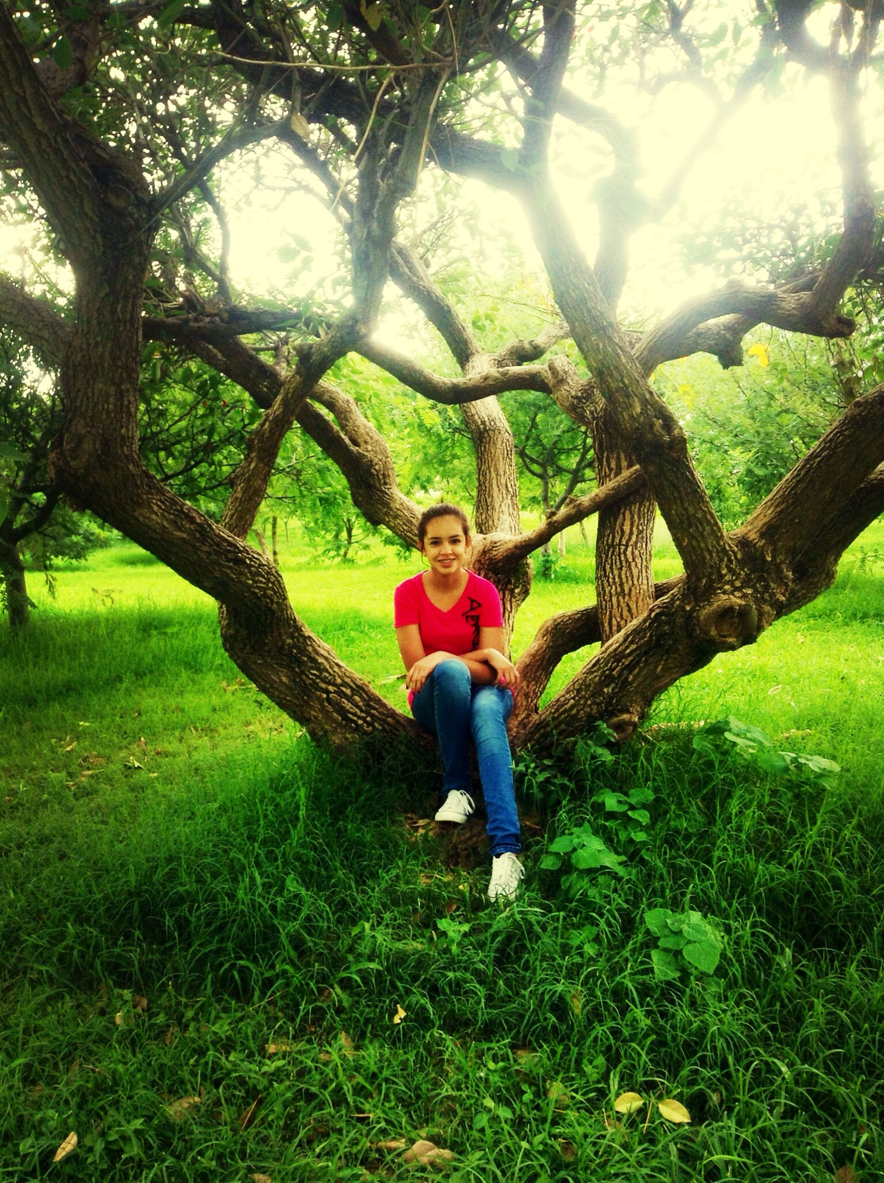 childhood, grass, lifestyles, leisure activity, full length, casual clothing, elementary age, person, boys, girls, green color, tree, park - man made space, innocence, field, standing, grassy, playful