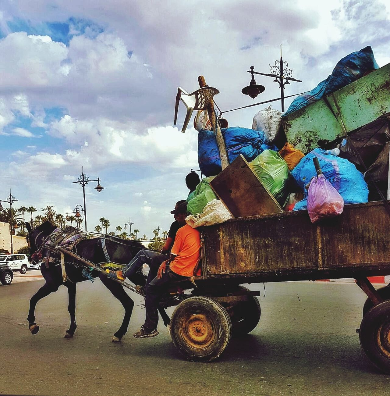 Transportation Horse Working Animal Mode Of Transport Side View Horsedrawn Horse Cart Sky Cloud Full Length Riding Land Vehicle Cloud - Sky Cart Carriage Domestic Animals Working Animals Livestock Bridle Day Marakesh Morocco Horsepower Travel Bestoftheday