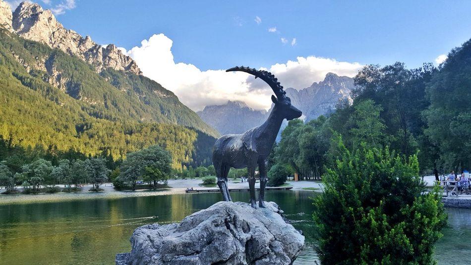 Beauty In Nature Day Goldhorn Kranjska Gora Lake Lake Jasna Mountain Nature Outdoors Sky Slovenia Slovenia ❤ Slovenian Alps Statue Tranquility Travel Destinations Tree Water