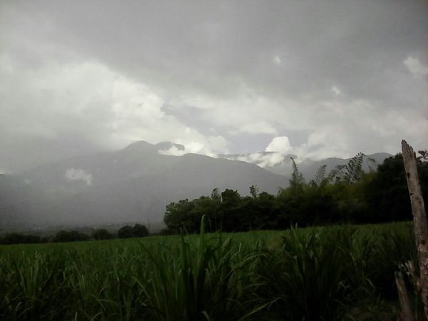Tranquility Beauty In Nature Tranquil Scene Nature Mountain Rural Scene Colombiamagiasalvaje Montañas Verdes