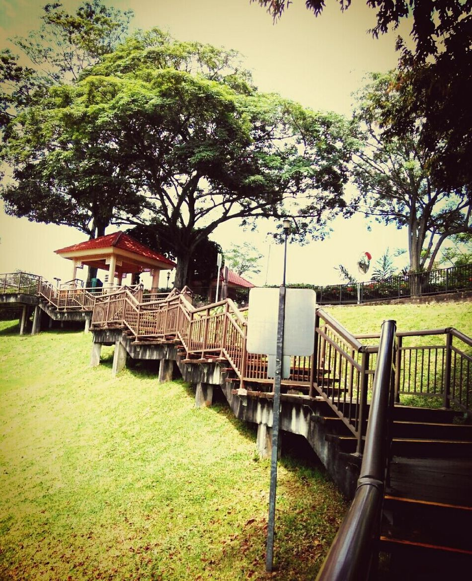 EyeEmNewHere Longstairs Railing Grass No People Nature Stairs & Shadows Tree And Sky Outdoors Day Vintage Photo