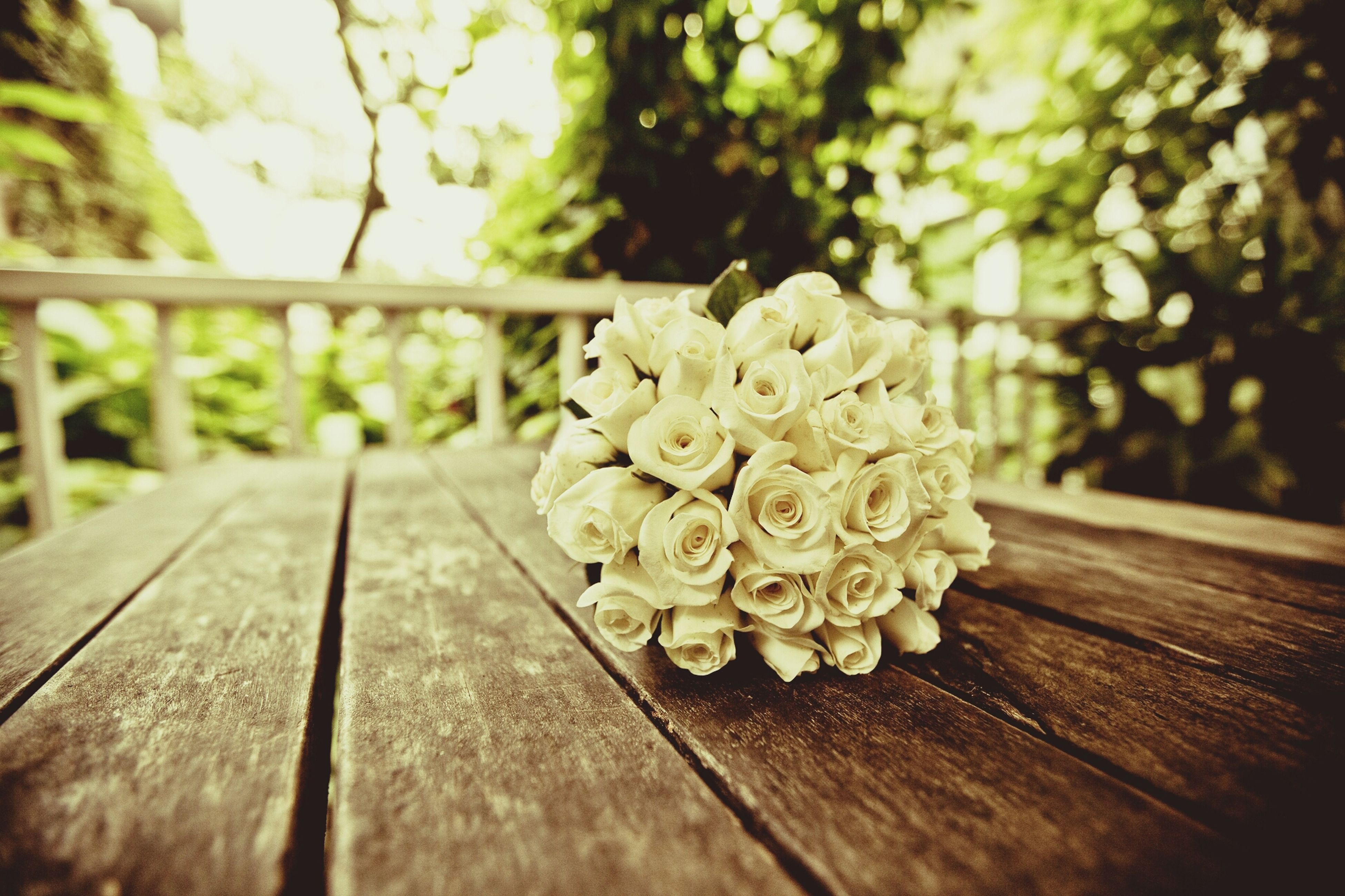 wood - material, flower, focus on foreground, wooden, close-up, freshness, selective focus, fragility, nature, table, growth, wood, beauty in nature, petal, tree, day, no people, plant, sunlight, outdoors