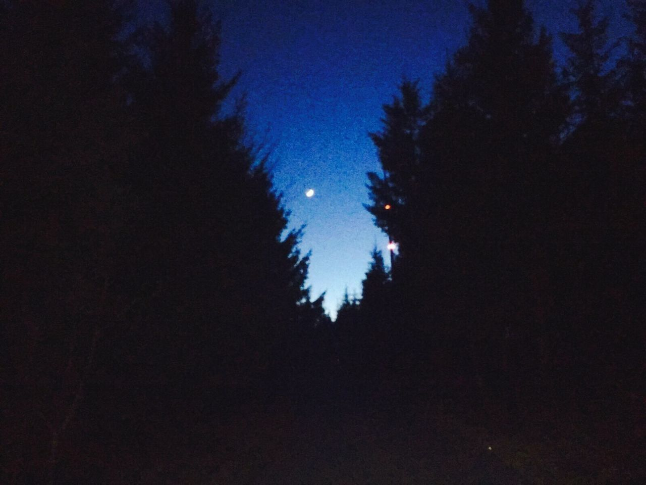 Night Sky Nature Blue Clear Sky Moon Outdoors Tranquil Scene No People Dark Star - Space