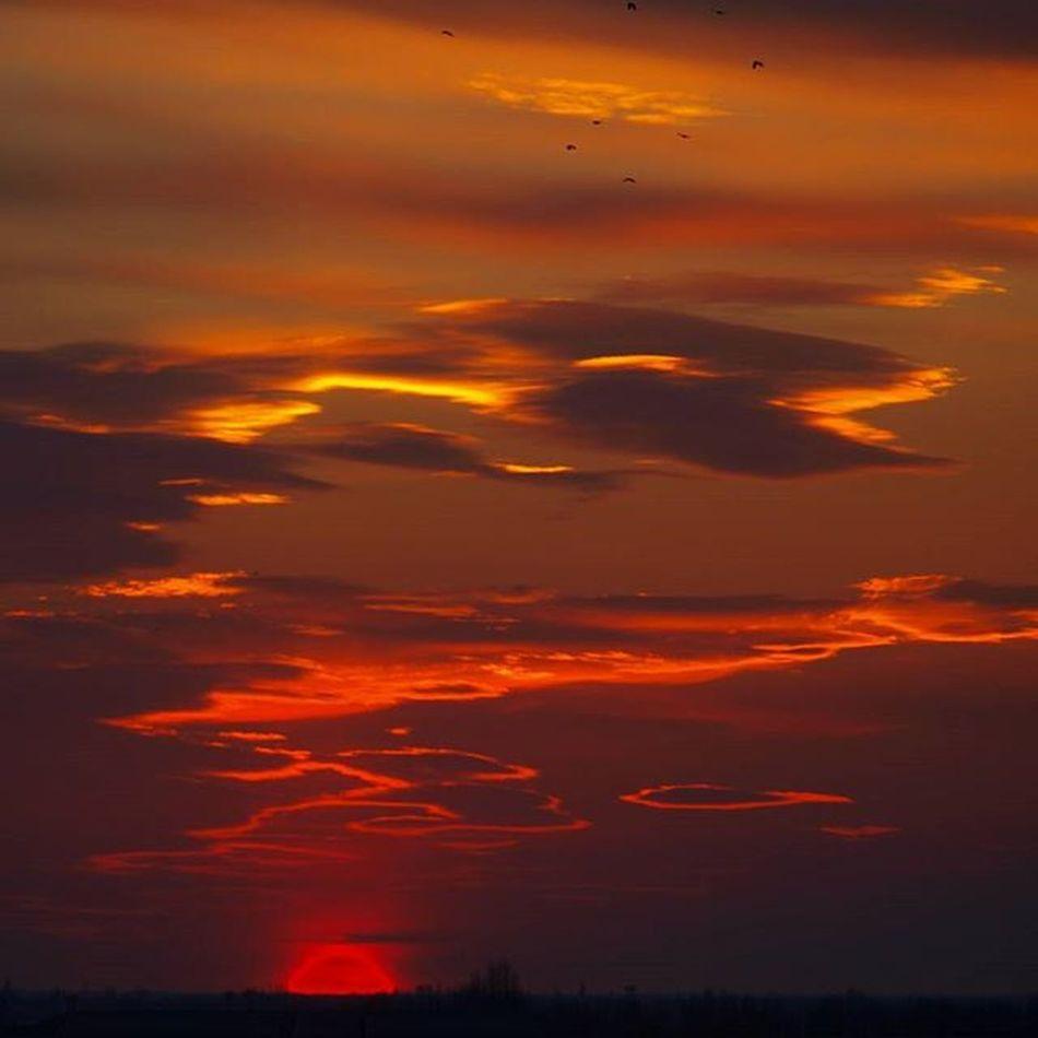 Шикарный Закат херсон )Sunset Nature_perfection Nature Khersongram Khersoncity Ukraine Instagood Instamood Instaperfect Goodvibes Goodevening