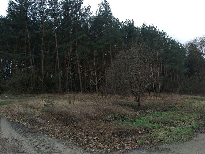 Landschaftsbilder🌾🌺🍂 Outdoors Landstrasse Landscape