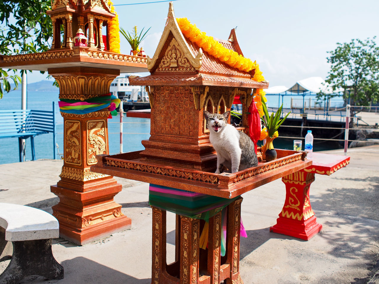 Architecture Art Art And Craft Cat Creativity Culture Cultures Famous Place Human Representation Koh Chang Ornate Place Of Worship Religion Sculpture Spirituality Statue Temple Temple - Building Thailand Spotted In Thailand