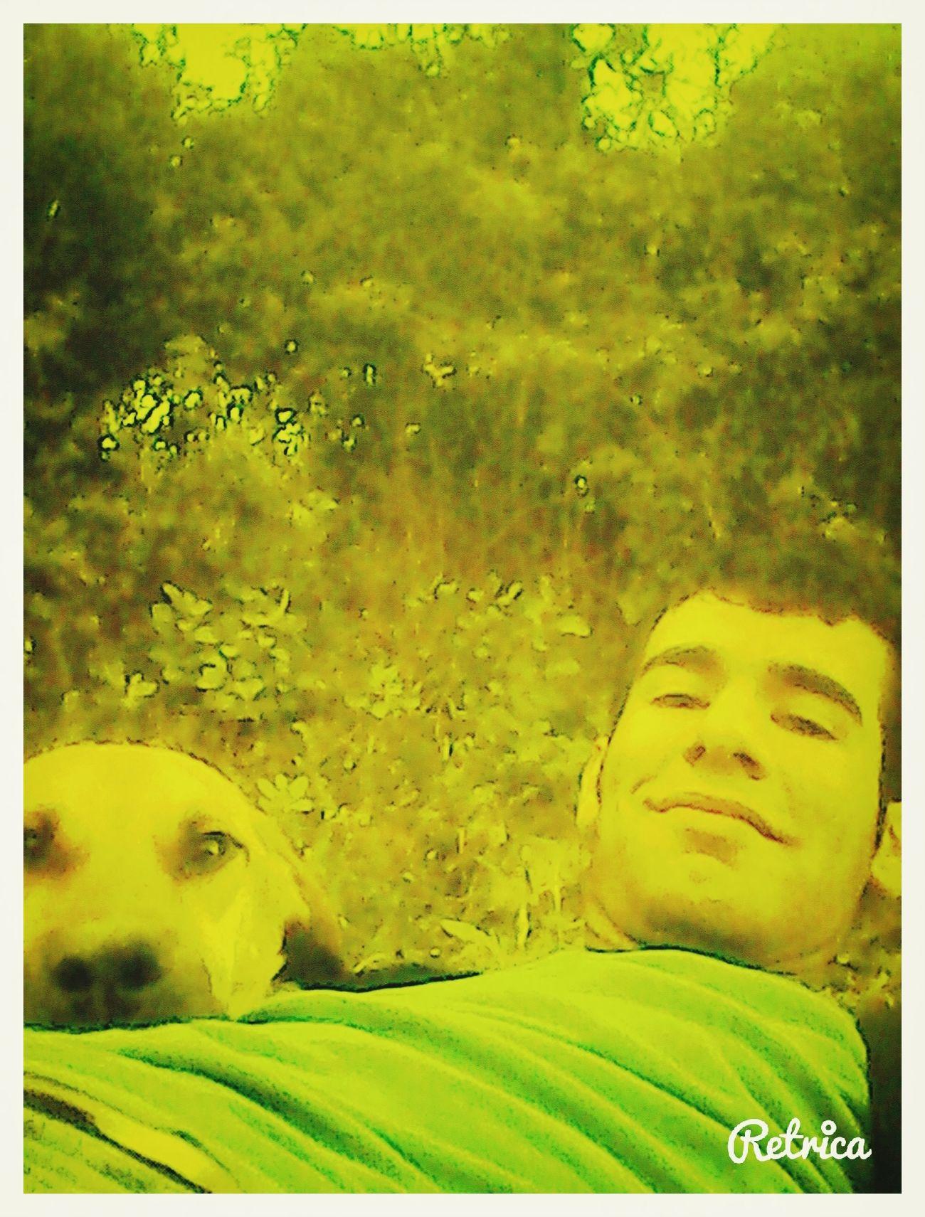 mydog :)