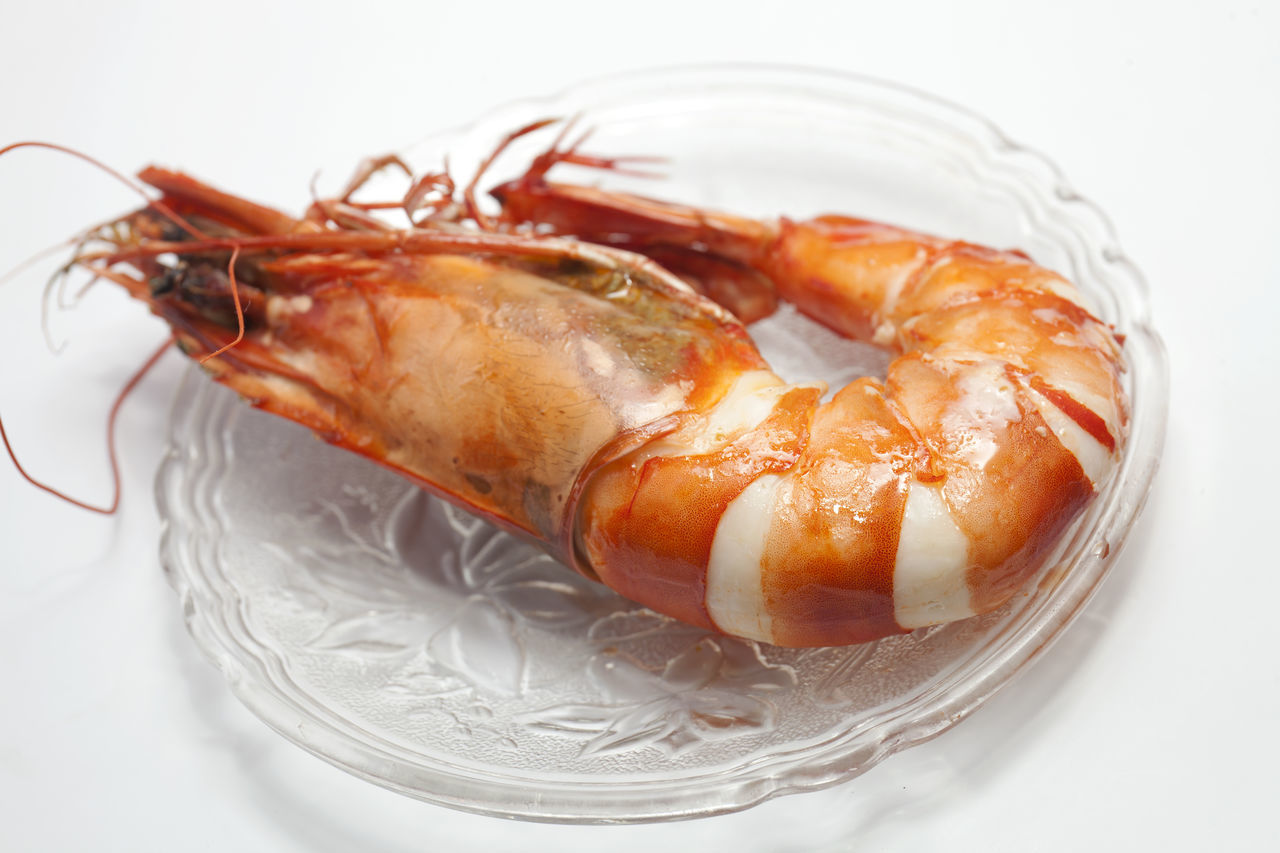 High Angle Close-Up Of Shrimp In Plate Over White Background