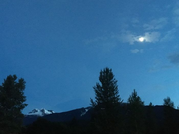 Mount Begbie Mountain Glacier Sky Snow Nature Trees Clear Sky Clear Blue Sky Revelstoke Canada Trees Scenery Moon Half Moon When The Moon Comes Out Night Love It Appreciate The Beauty Around You
