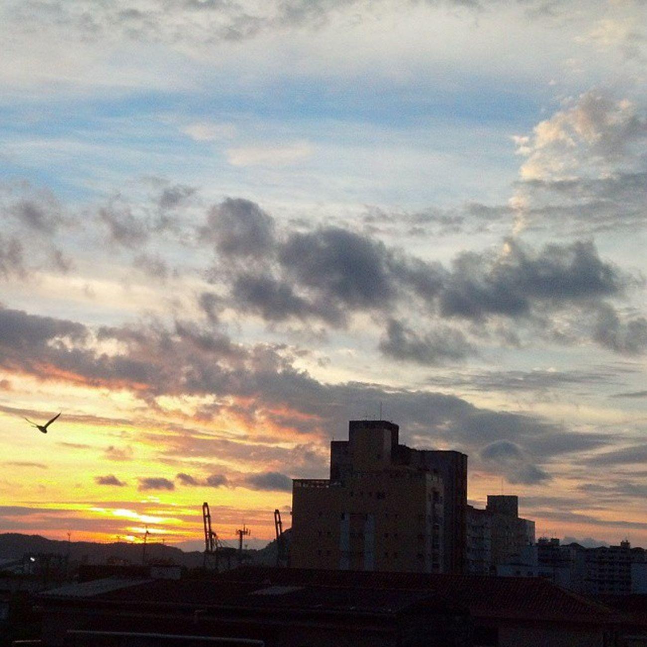 Mudaram as estações.. nada mudou (8) PorEnquanto Legiãourbana  Nofilter Semfiltro byesummer bemvindo outono bird porto Santos thankGod