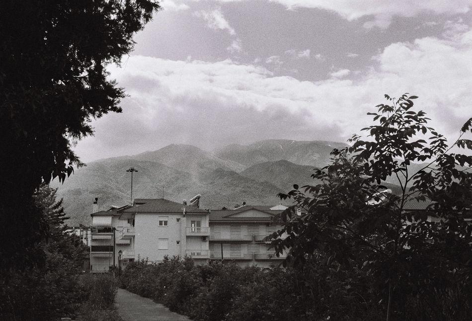 Analogue Photography Blackandwhite Cloud - Sky Day Mountain Nature No People Sky Tree