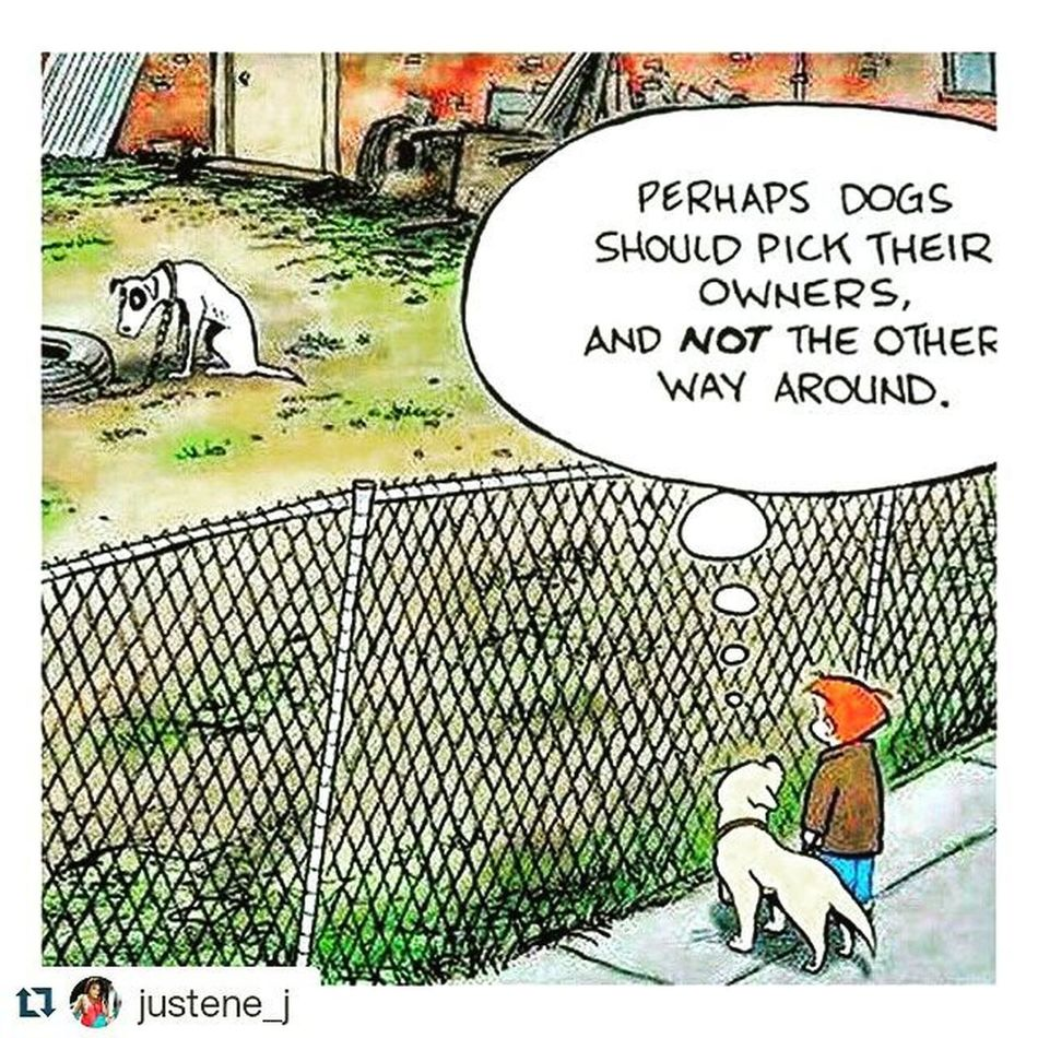 """""""It is hilarity that there is a saying that all men are dogs. While there is another about a man chooses a woman based on his mother or parents. The sickest irony is humanity....""""-Suresickness Becausebeautyisintheheartofthebeholder Picturemebeingraised AllDogsGoToHeaven Jesuswasthedog"""