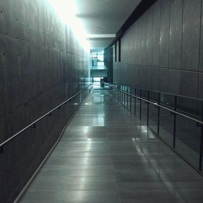 兵庫県立美術館に行く目的の半分はこのスロープを歩きたいから…だったりする。 安藤忠雄 Museum Slope Design Blue 青い光 心落ち着く空間 兵庫県立美術館 Japan Architecture