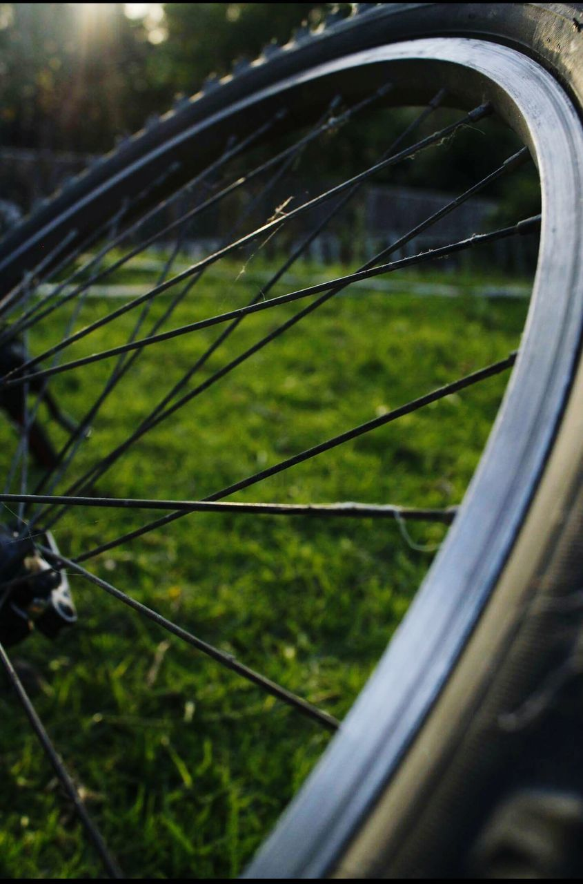 grass, bicycle, spoke, no people, day, close-up, outdoors, transportation, focus on foreground, wheel, land vehicle, tree, nature, tire