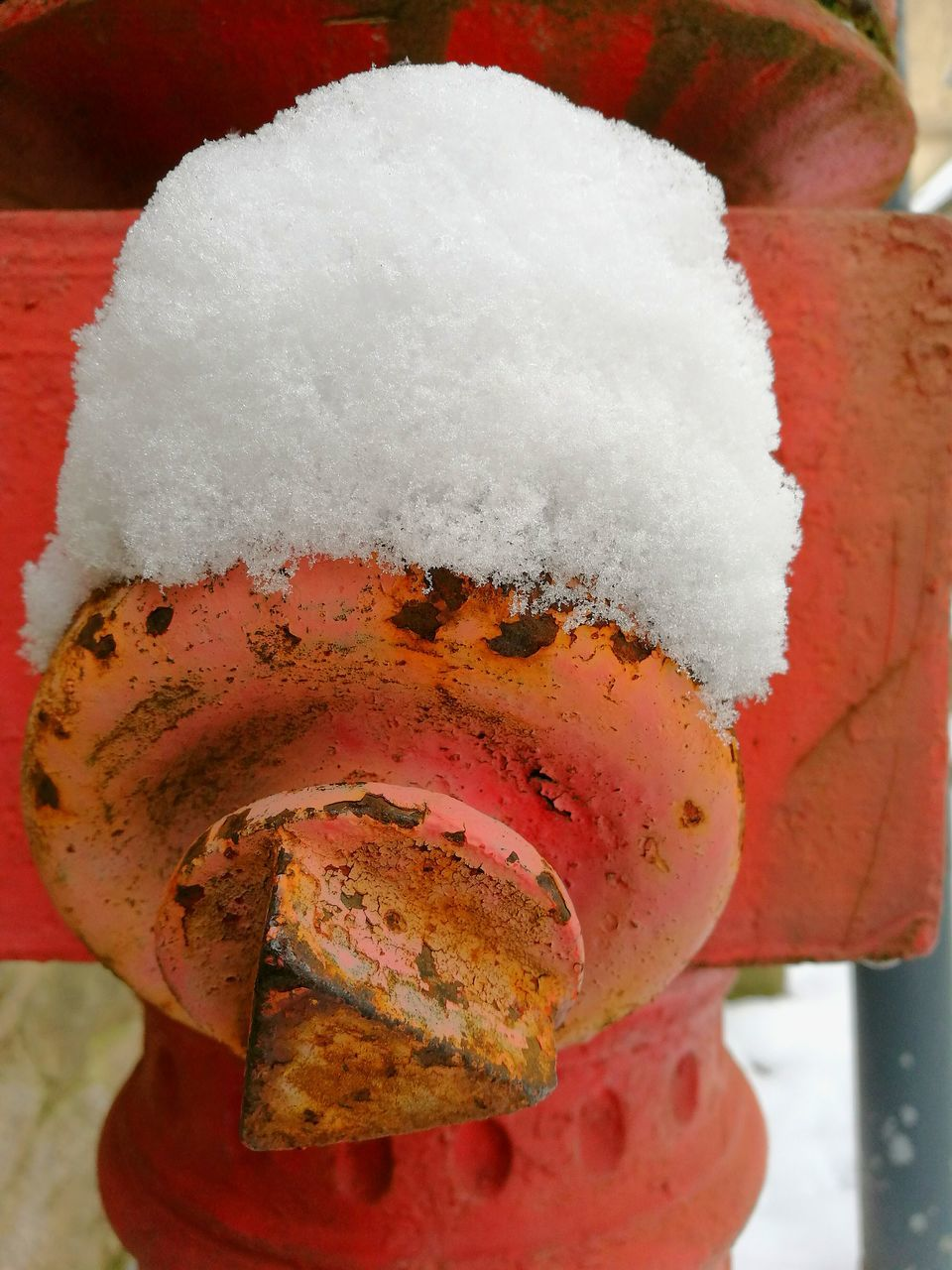 close-up, food and drink, cold temperature, no people, snow, winter, red, freshness, day, food, outdoors