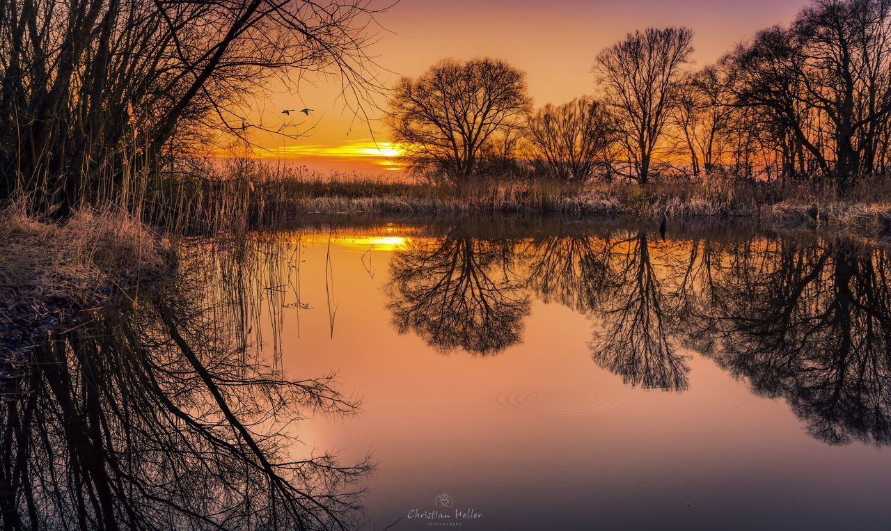 Abends am Teich Bare Tree Beauty In Nature Lake Nature No People Non-urban Scene Outdoors Reflection Reflection Lake Scenics Silhouette Sky Sunset Tranquil Scene Tranquility Tree Water