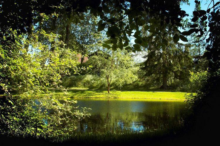Garden of Eden? Green Green Green!  Garden Eden Park Summer ☀ Summertime Faces Of Summer Summer Views Pentax Greenery