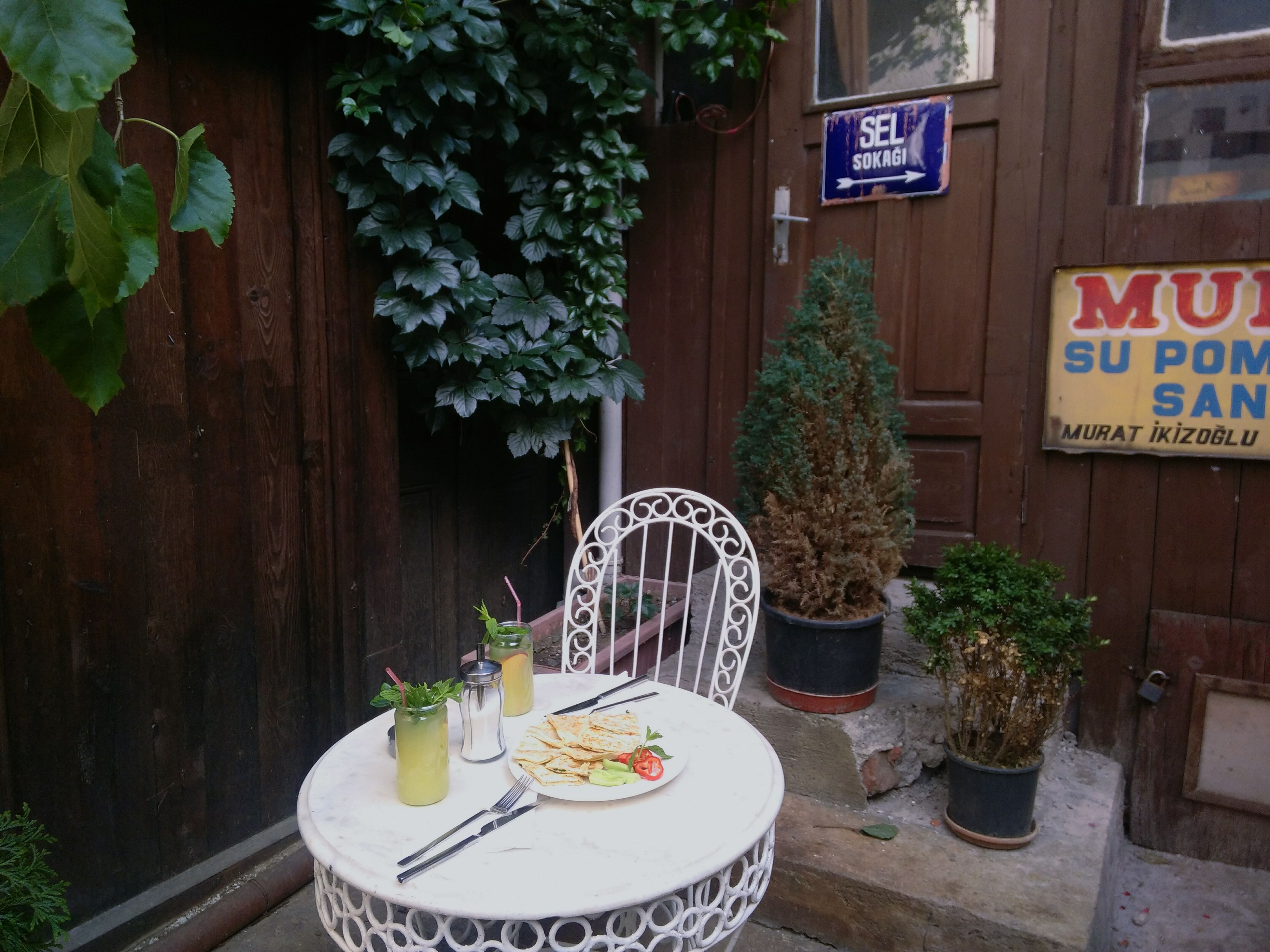 food and drink, plant, table, potted plant, leaf, growth, place setting, pot plant, freshness, green color, no people, large group of objects