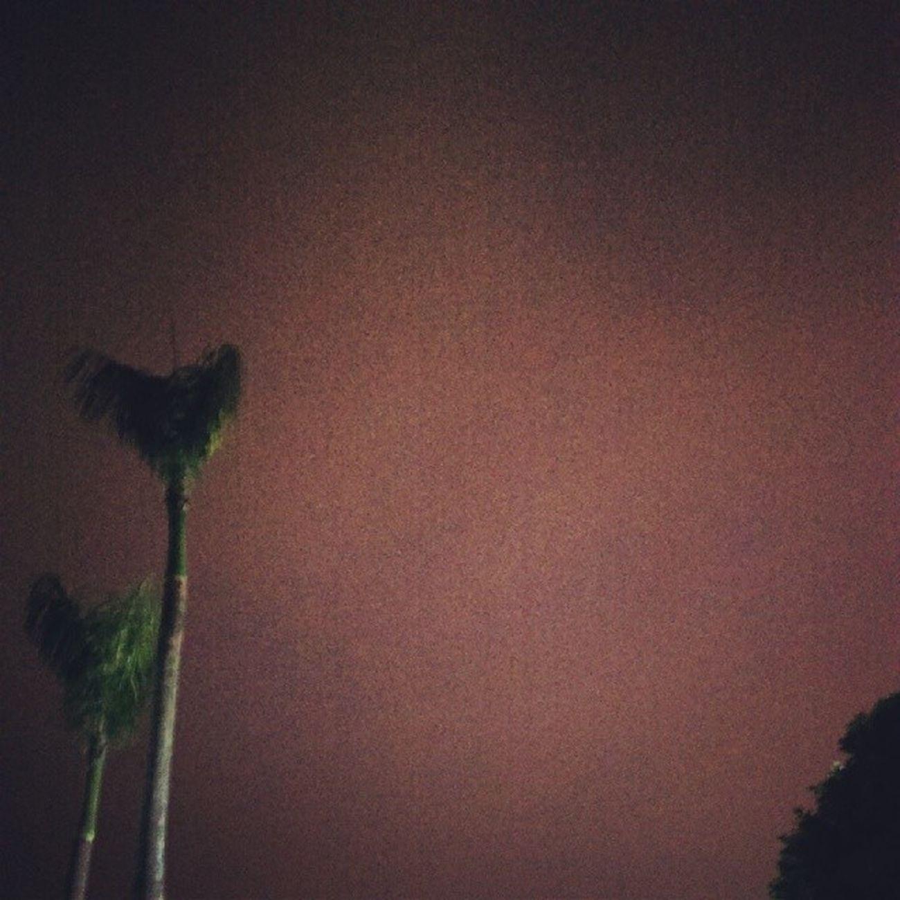 嗨 我這裡的天空 被光渲染成淡淡的粉紅色