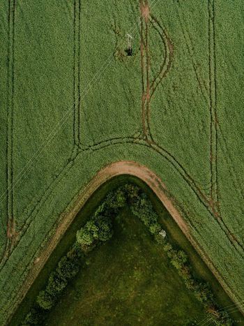 Summer in the fields Green Color No People Nature Outdoors Day Epic Minimmalist Landscape Beauty In Nature Aerial Photography Aerial Drone  Dji Urban Geometry