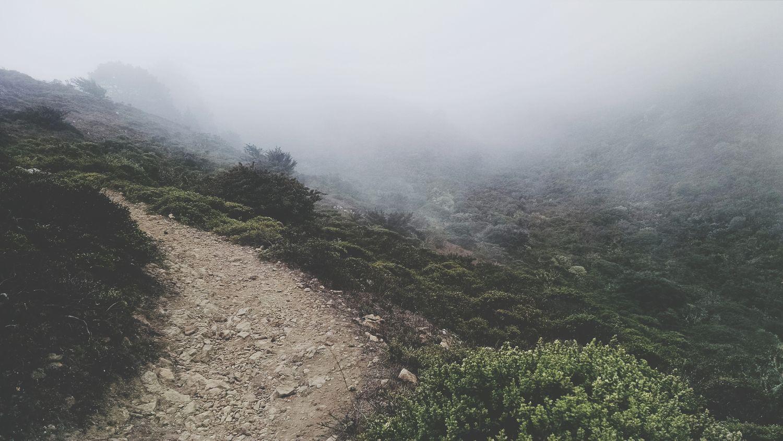 Bay Area San Bruno Mountain Hiking