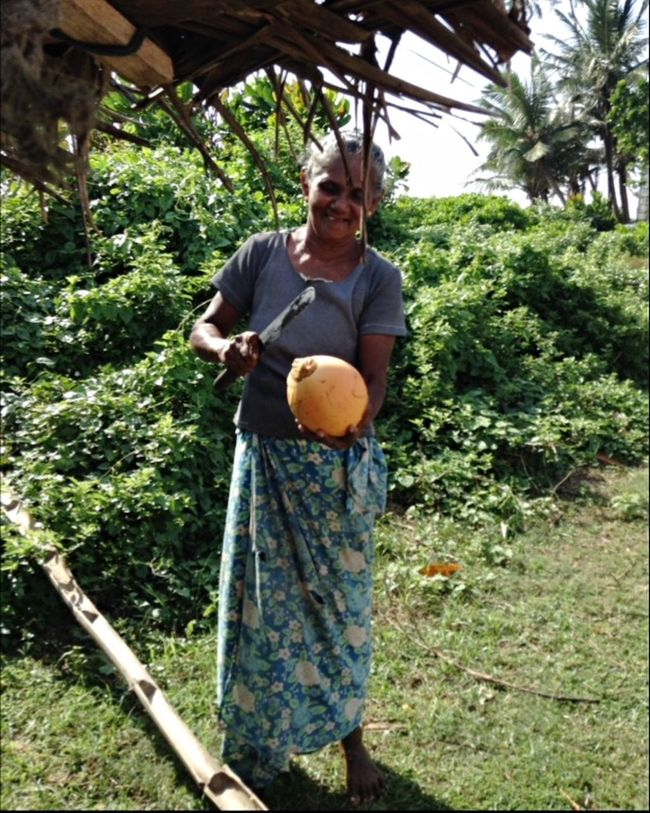 RePicture Travel Coconut Traveling Sun SriLanka People