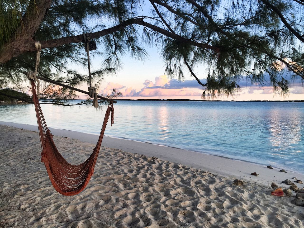 Beautiful stock photos of bahamas, Beach, Beauty In Nature, Hammock, Hanging