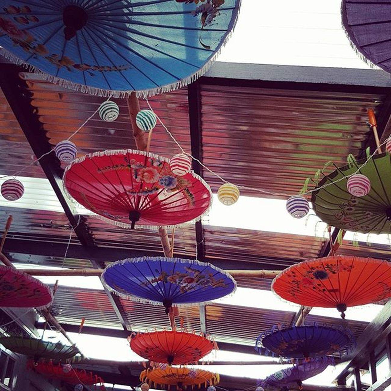 Taunggyi Umbrella