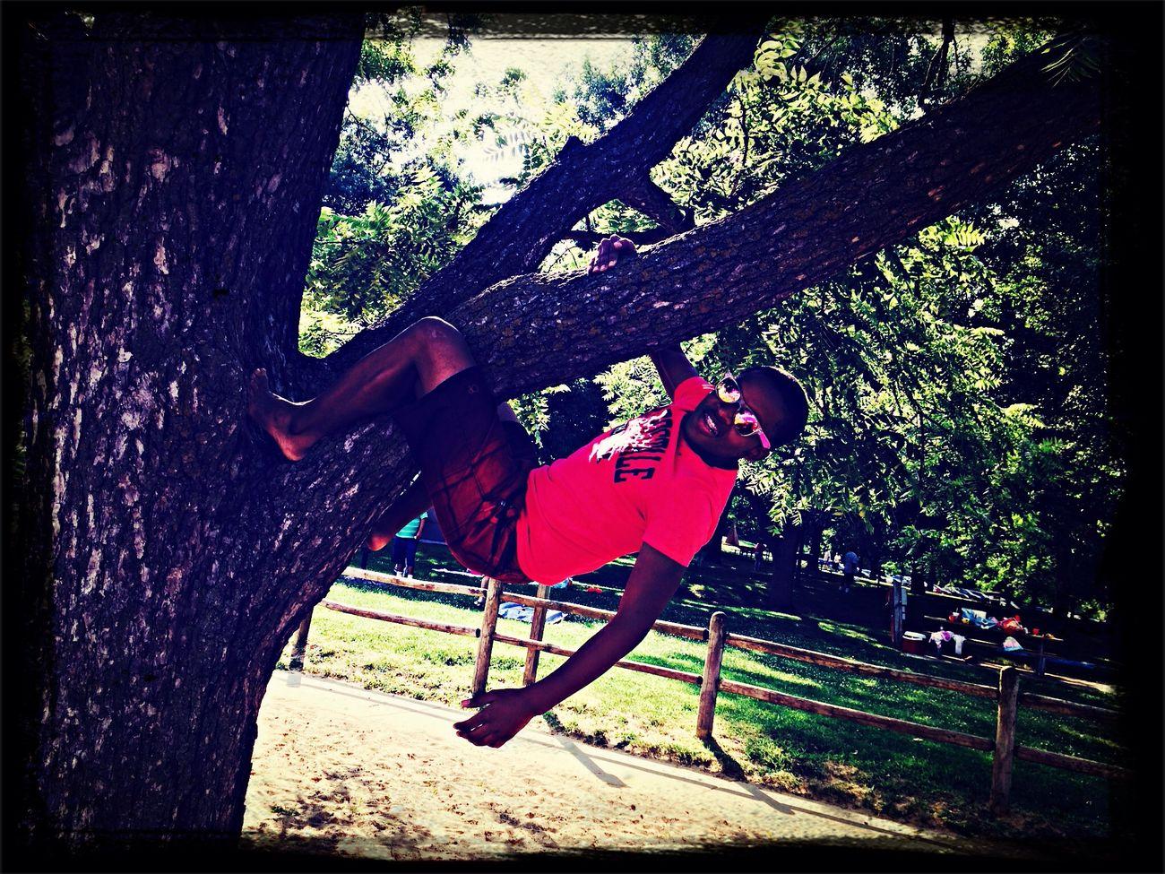 Hugging A Tree Enjoying The Sun Relaxing Hanging Out
