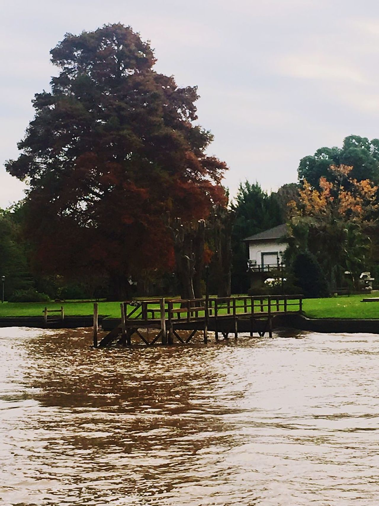 Tree Nature Built Structure Tranquility Sky Water Outdoors Architecture No People Day Grass Beauty In Nature Building Exterior Tigre Delta