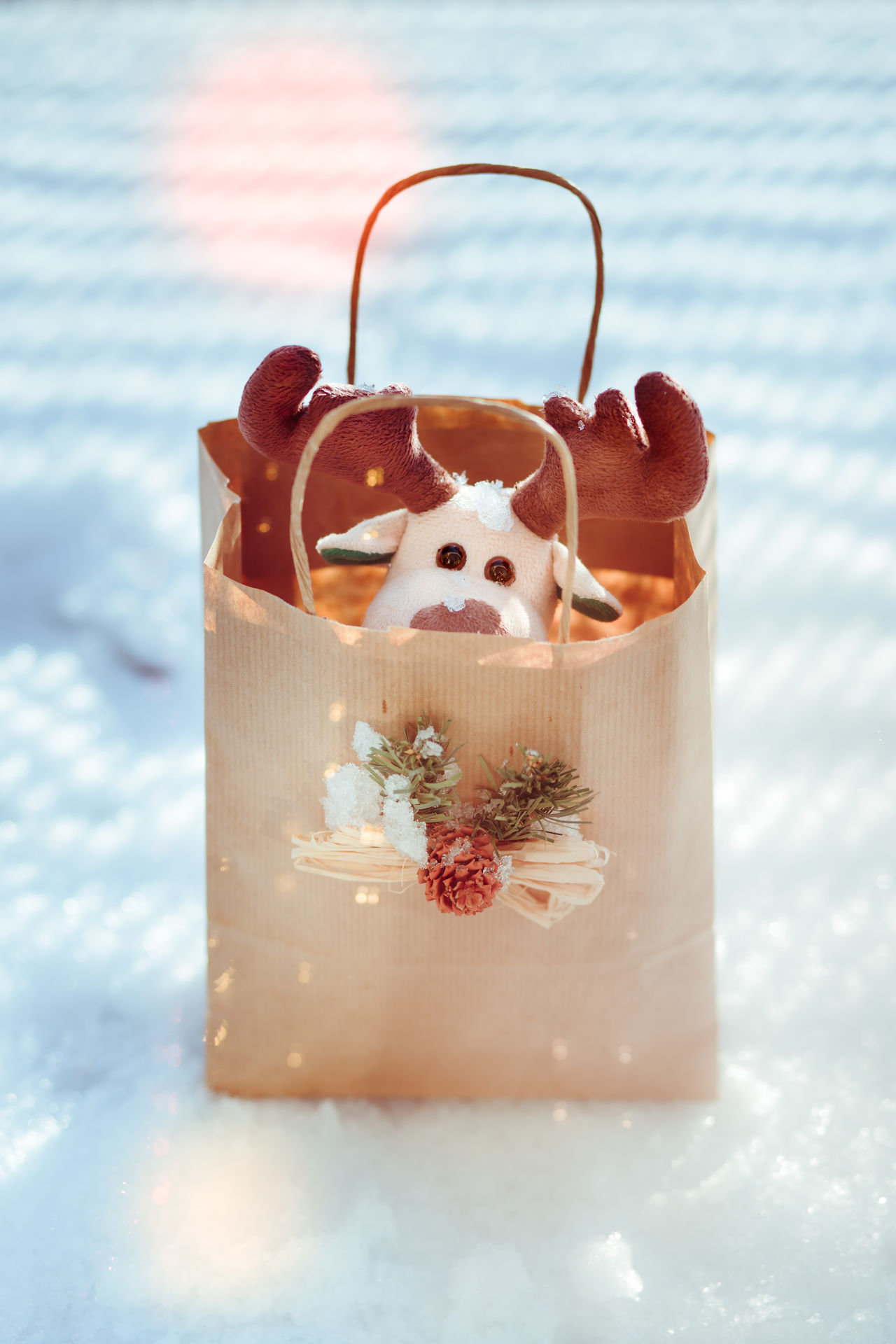 Reindeer toy in a paper bag for Christmas gift Bag Blur Blurred Celebrating Celebration Christmas Gift Holiday Holidays Light Outdoors Packed Paper Present Reindeer Season  Snow Toy Tradional Tree Winter