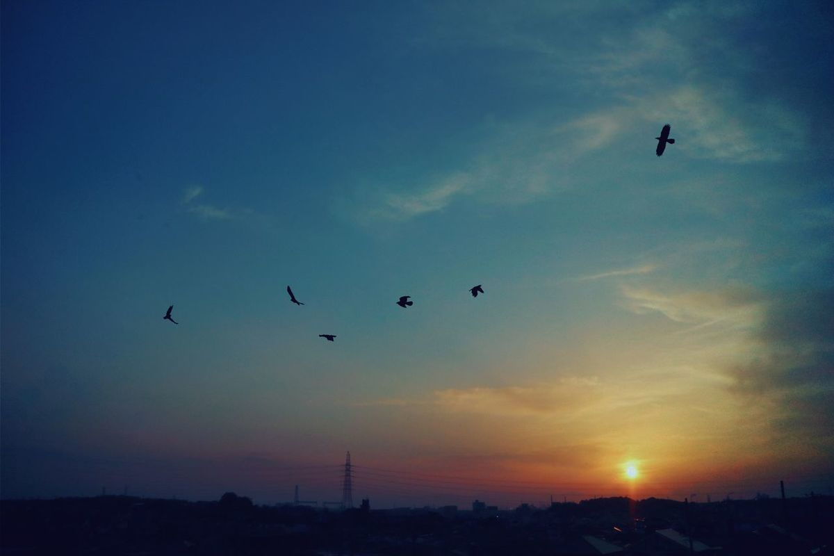 Japan Sky Sunset Sunset Silhouettes Sunset_collection Sunsets ゆうひ 夕陽