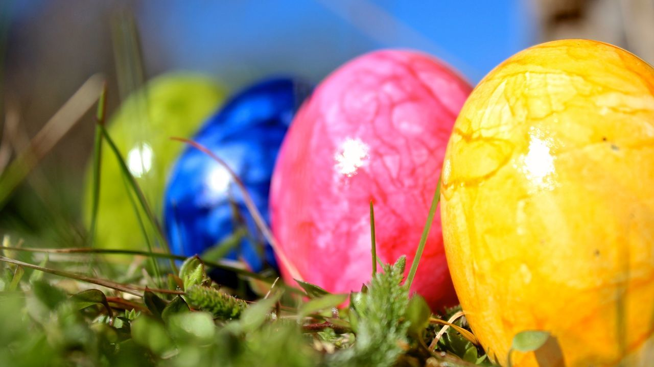 Happy Easter Colored Eggs