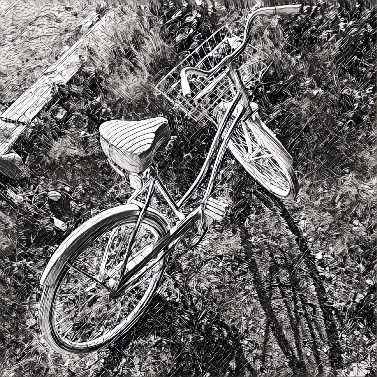 Bicycle Mode Of Transport Land Vehicle High Angle View Transportation Bicycle Basket Shootermagazine Mobiography Malephotographerofthemonth Youmobile Streamzoofamily Shootermag_usa IPhone7Plus Blackandwhite Black And White EyeEm Best Shots - Black + White Monochrome