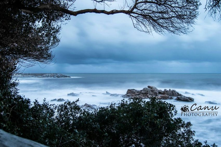 Reflection Beauty In Nature Winter Nature Sky Beach Tree Nikon Cielo Spiaggia EyeEm Gallery Nikonphotography Nikon Photography Nikon D3200 Nature Photography Mare Day Tranquility Beauty In Nature Nature Water