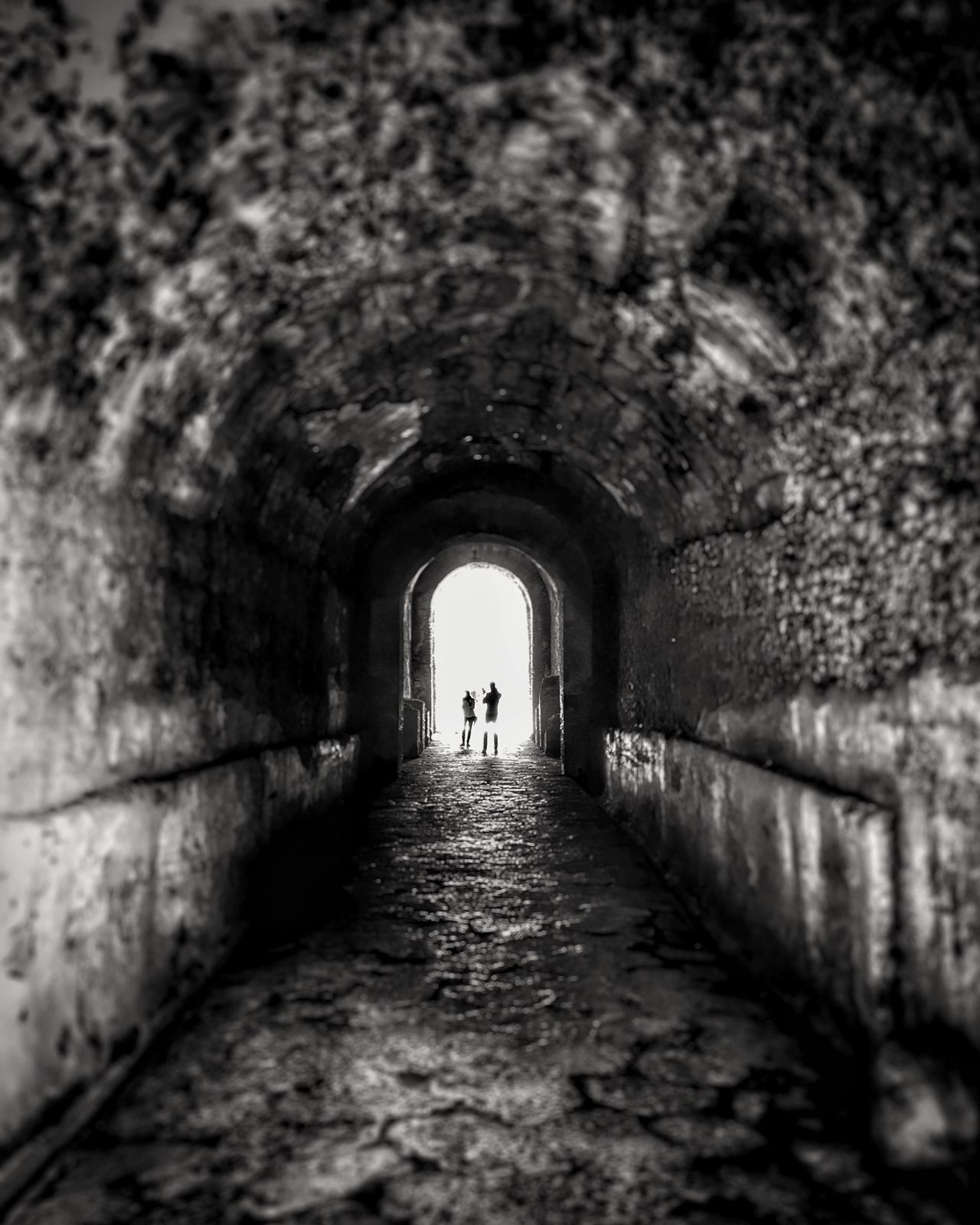 My Year My View The Way Forward Real People Tunnel Arch Walking Built Structure Architecture Day Indoors  Silhouette Full Length Men One Person Archway People Pompeii  Amalfi Coast Italy Blackandwhite Blackandwhitephotography Black & White