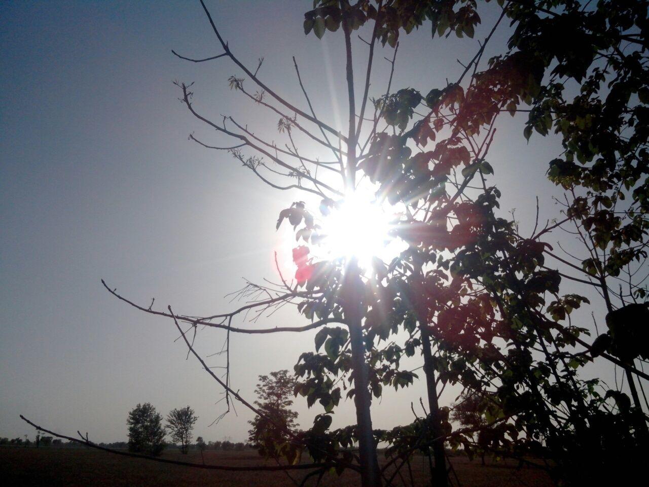 Sunset #sun #clouds #skylovers #sky #nature #beautifulinnature #naturalbeauty #photography #landscape Sunsky Trees Beauty Of Pakistan Nature EyeEm Nature Lover Sun Going Down