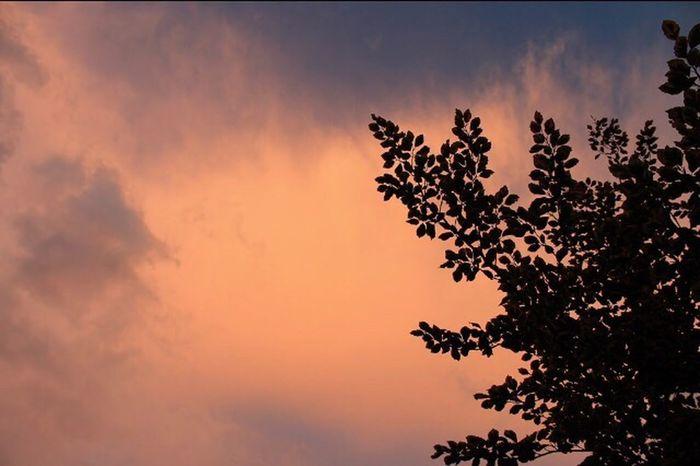Utah The Five Senses EyeEm Best Shots EyeEm Nature Lover EyeEmBestPics Clouds And Sky Sunset Clouds Colors Beautiful