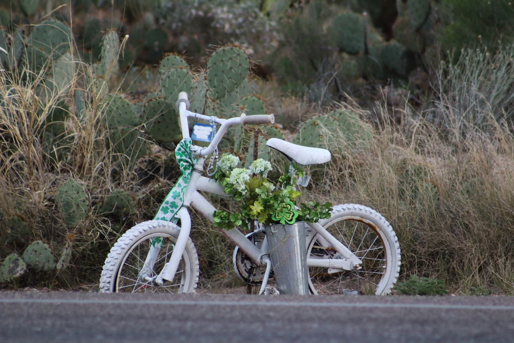 Celebrate Your Ride, but never forget those who did not make it home from theirs. Ghost Bike Showcase March