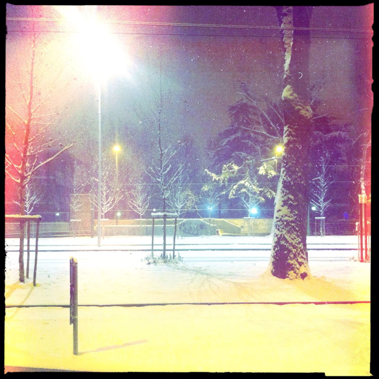 cold temperature, winter, lens flare, snow, illuminated, night, outdoors, tree, no people, street light, nature, road, sky, city, ice rink