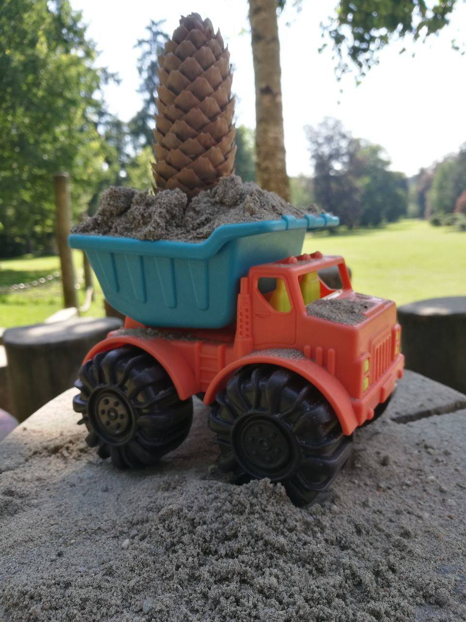 day, outdoors, front or back yard, childhood, no people, focus on foreground, tree, field, transportation, growth, grass, tire, close-up, nature, sand pail and shovel