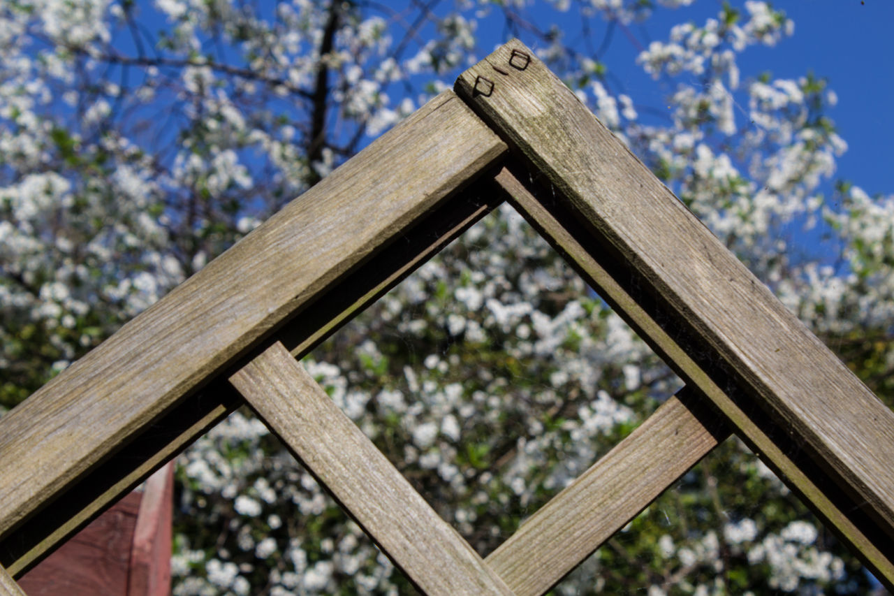 Close-up Day Focus On Foreground Nature No People Outdoors Pergola Sky Tree Wood - Material